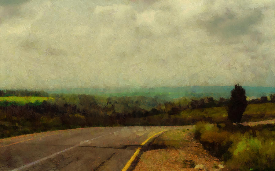 Landscape Photograph - Road in a field by Michael Goyberg