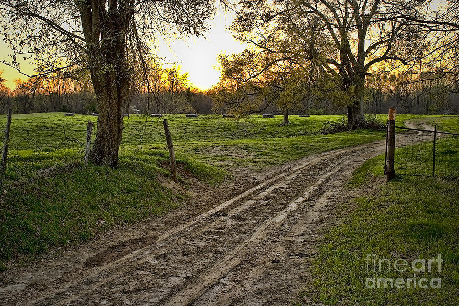 Farm House Photograph - Road Less Traveled by Cris Hayes