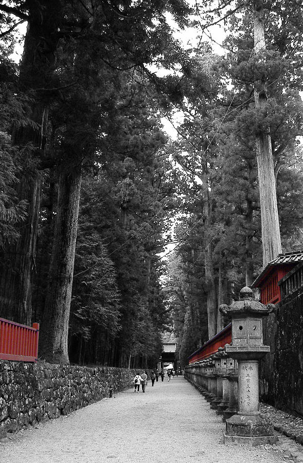 Gate Photograph - Road To The Temple by Naxart Studio