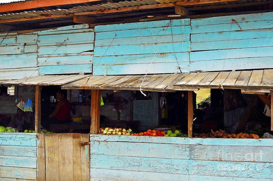Fruit Photograph - Roadside Fruit Stand- Belize by Li Newton