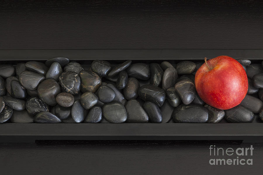 Apple Photograph - Rock Apple by Juan Silva