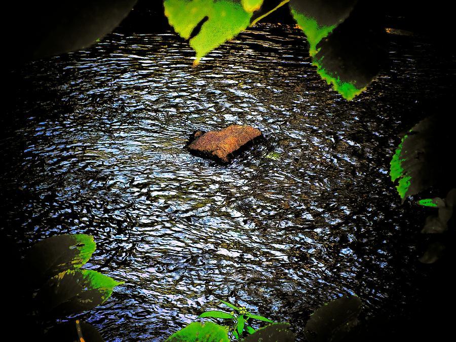 River Photograph - Rock River by Michael L Kimble