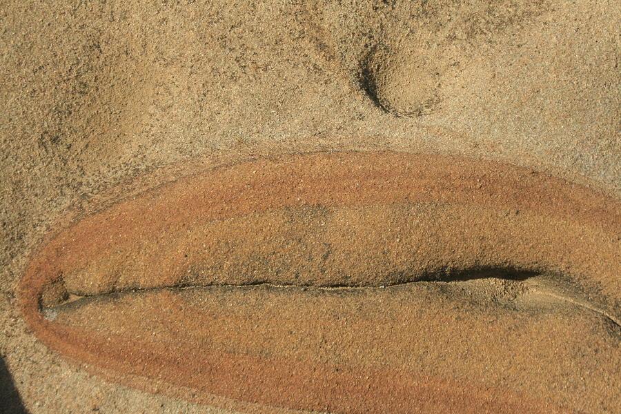 California Photograph - Rock Sculpture by Suzanne Lorenz