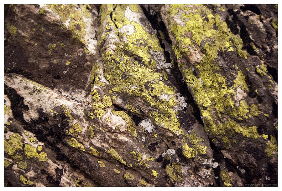 Rock Photograph - Rock Wall 1 by Mark Ivins