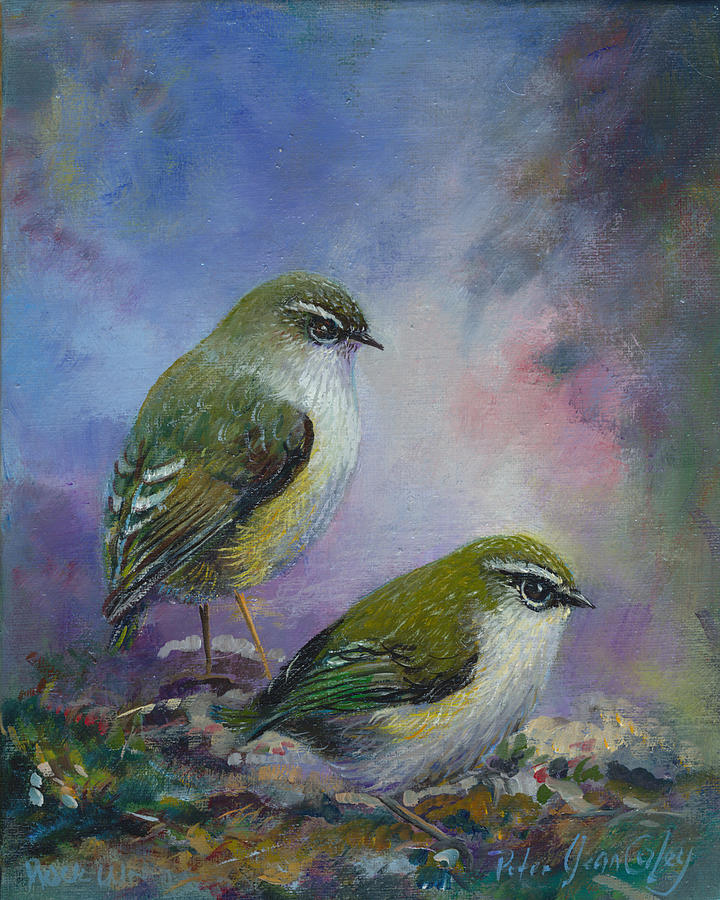 Rock Wren Painting - Rock Wren New Zealand by Peter Jean Caley