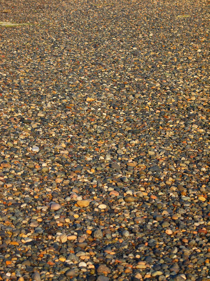 Birch Bay Photograph - Rocks by Jim Moore