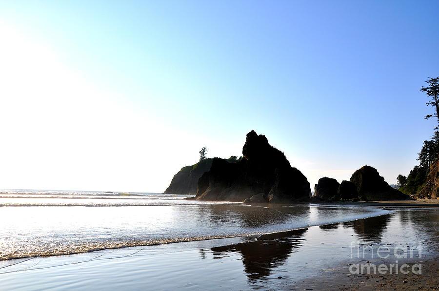 Rocks Photograph - Rocks by Tanya  Searcy