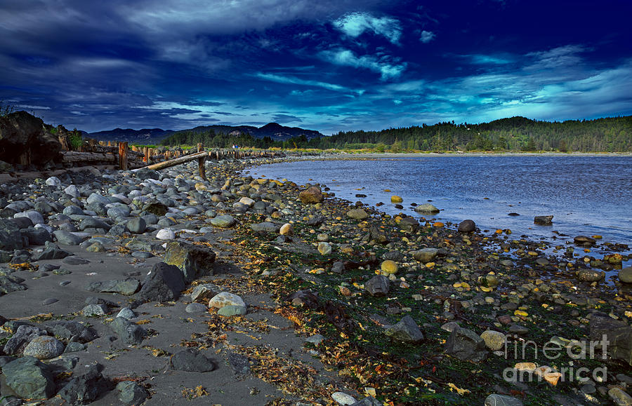 Harbor Photograph - Rocky Beach In Western Canada by Louise Heusinkveld