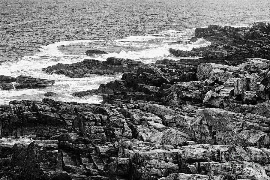 Maine Photograph - Rocky Coastline II - Black And White by Hideaki Sakurai