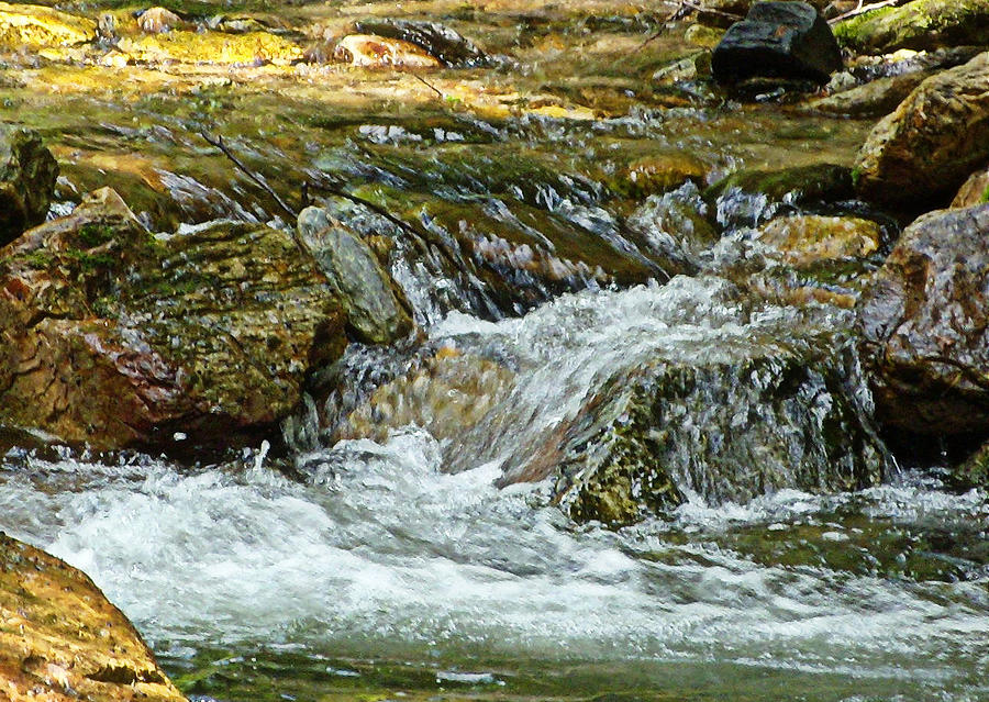 Water Photograph - Rocky River by Lydia Holly