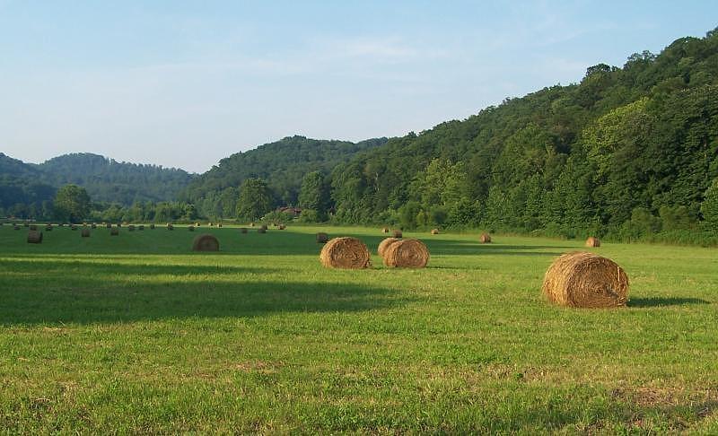 Hay Photograph - Rollin Hay by Cumberland Studios