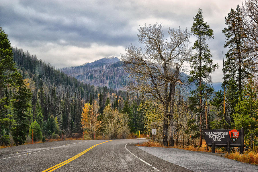 Yellowstone National Park Photograph - Rolling Into Yellowstone by Kelly Reber