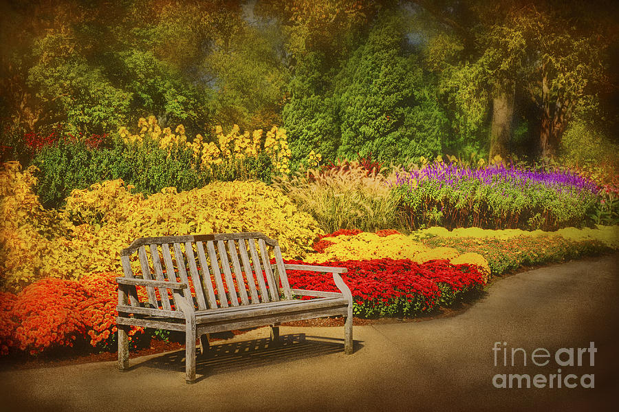 Botanical Photograph - Romantic Flower Garden  by Cheryl Davis