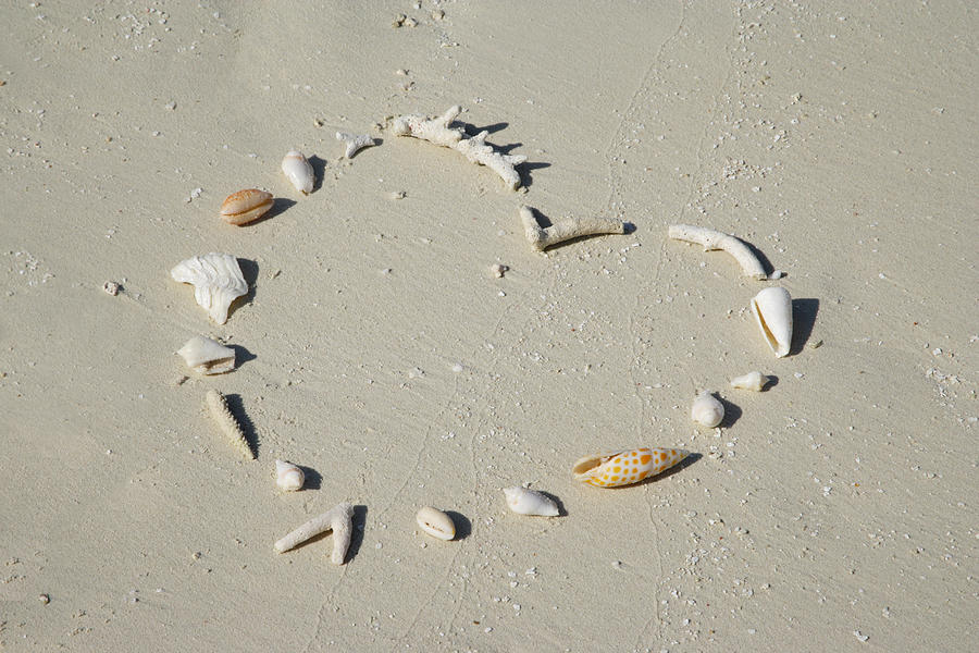 Horizontal Photograph - Romantic Message On Beach In Coral And Shells. by Rosemary Calvert