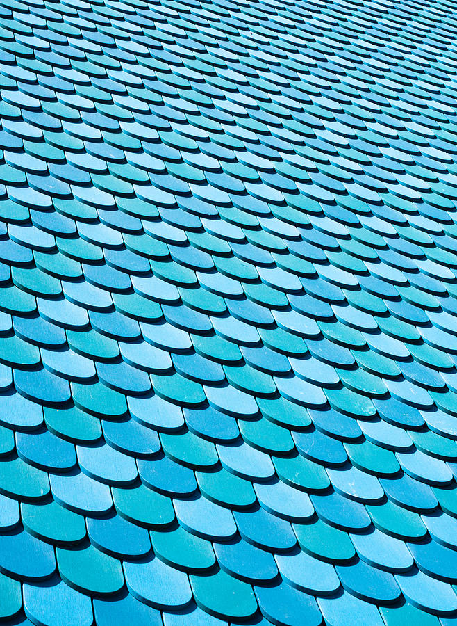 Abstract Photograph - Roof Panels by Tom Gowanlock