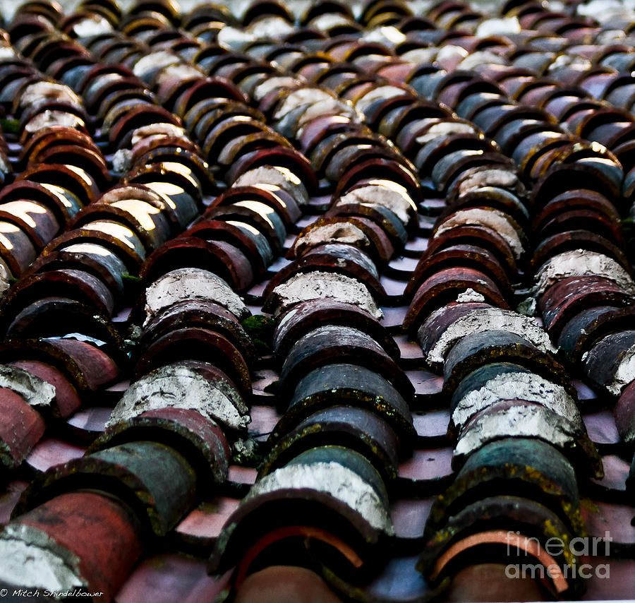 Roof Tiles Photograph