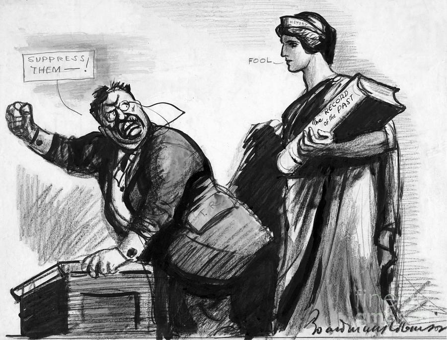 1916 Photograph - Roosevelt Cartoon, C1916 by Granger