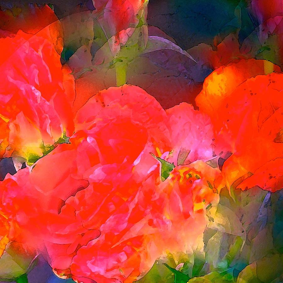 Floral Photograph - Rose 144 by Pamela Cooper