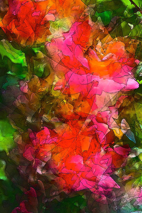 Floral Photograph - Rose 147 by Pamela Cooper