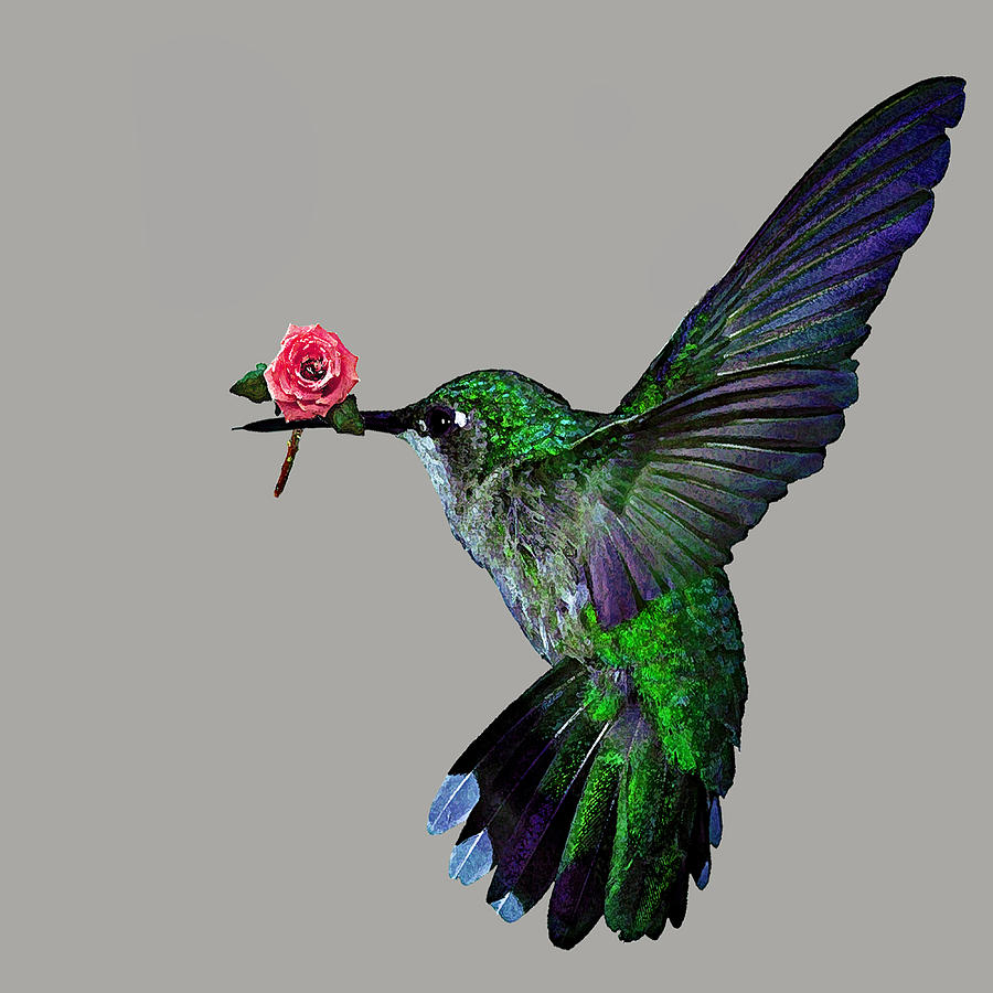 Roses Painting - Rose Baring Bird by Carly Ralph