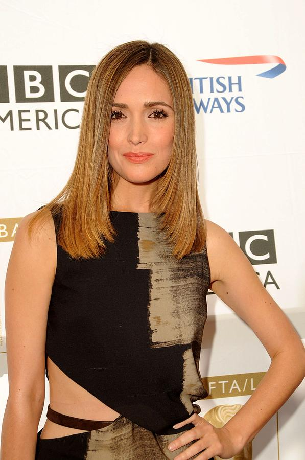 Party Photograph - Rose Byrne In Gucci At Arrivals For 8th by Everett