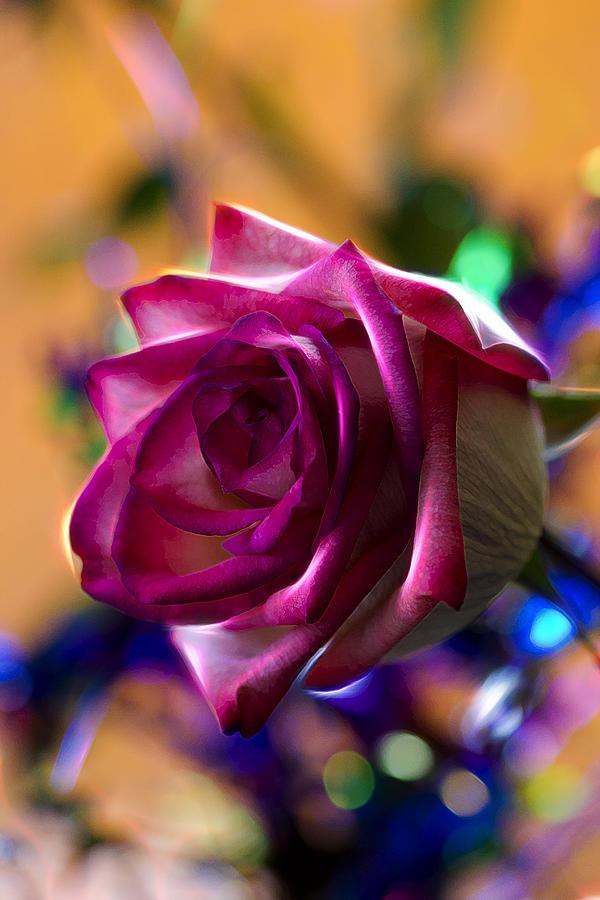 Rose Photograph - Rose Celebration by Bill Tiepelman