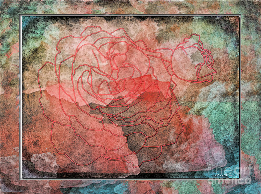 Nature Photograph - Rose Outline Abstract by Debbie Portwood