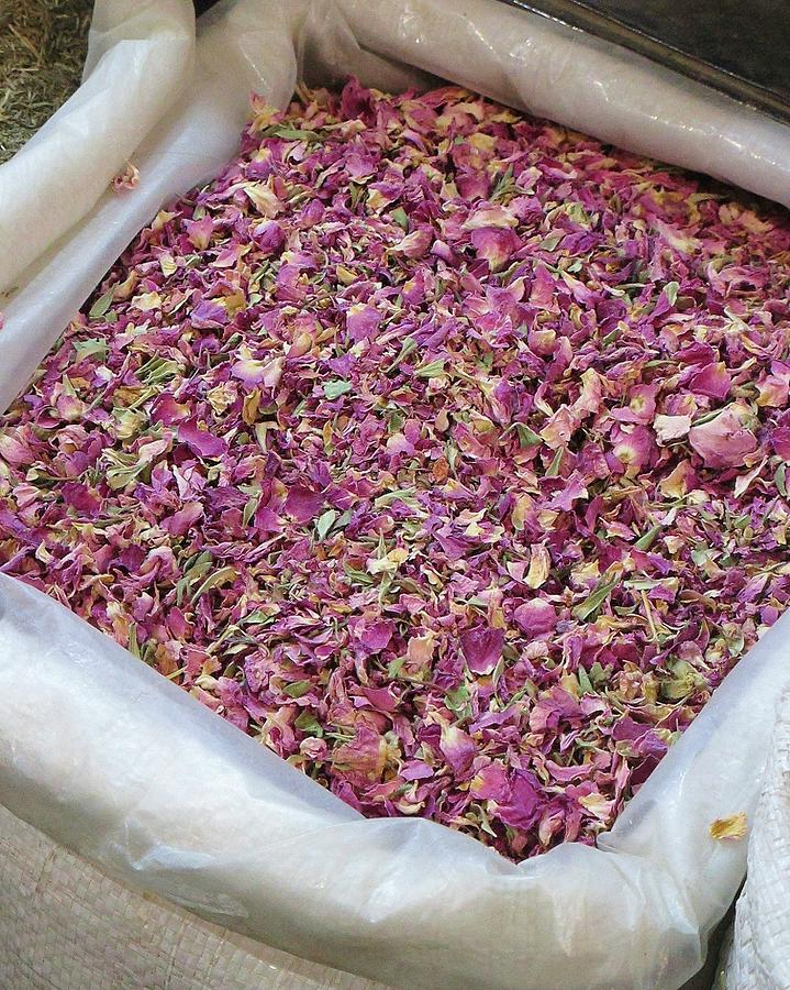 Pink Photograph - Rose Petals by Tia Anderson-Esguerra