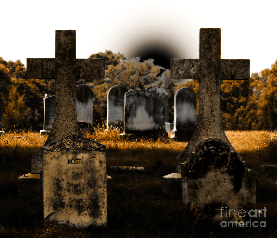 Cemetery Photograph - Rose by Steven Digman