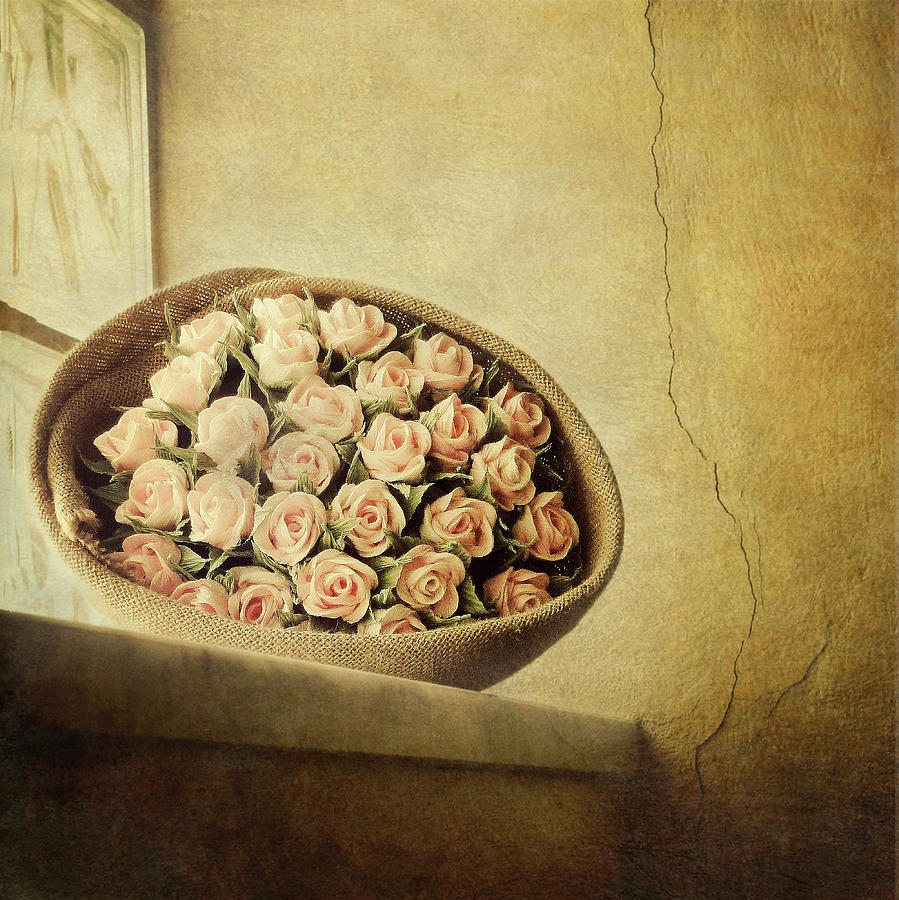 Vertical Photograph - Roses On Window by Marco Misuri