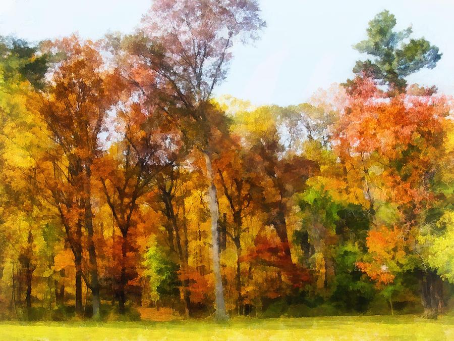 Autumn Photograph - Row Of Autumn Trees by Susan Savad
