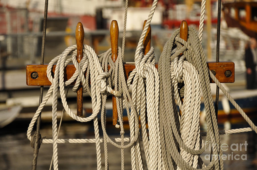 Ropes Photograph - Row Of Ropes by Camille Lyver