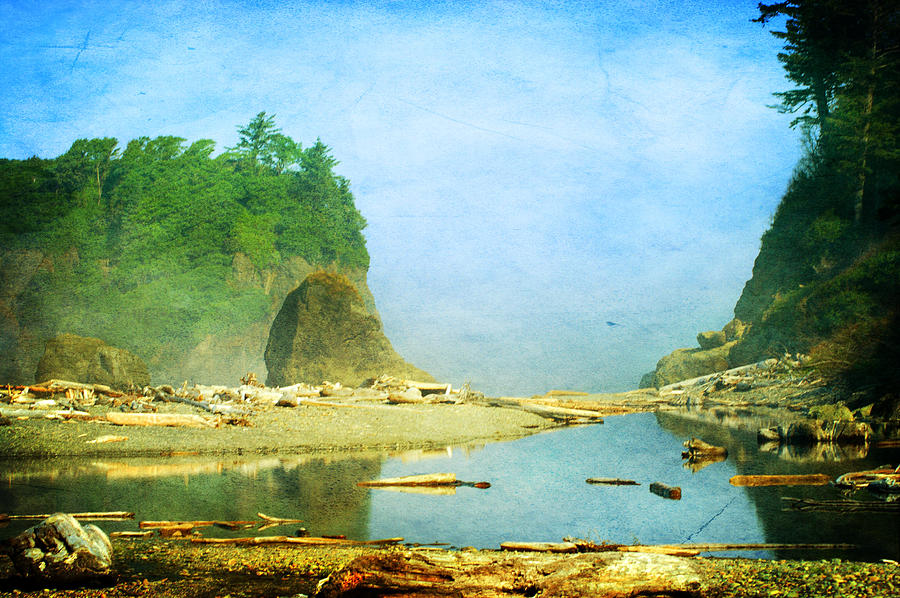 Washington State Photograph - Ruby Beach Dreams by Terrie Taylor