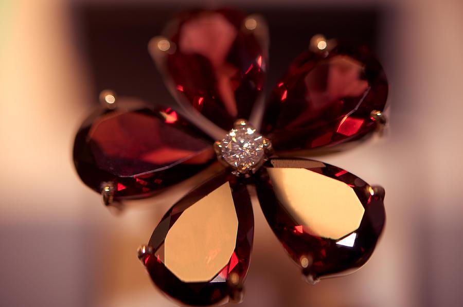 Ring Photograph - Ruby Ring. Spirit Of Treasure by Jenny Rainbow