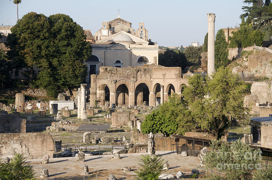 Worth Photograph - Ruins. Roman Forum by Bernard Jaubert