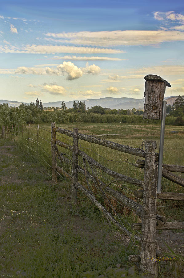 Rural Photograph - Rural Birdhouse On Fence by Mick Anderson