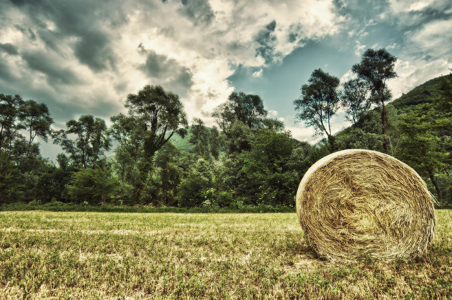 Horizontal Photograph - Rural Landscape With Hay Bale by sisifo73photography by Marco Romani