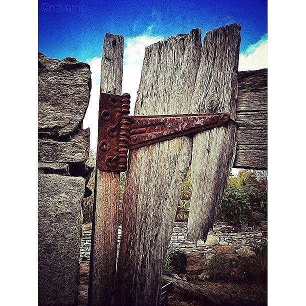 Wood Photograph - Rural Textures by Natasha Marco