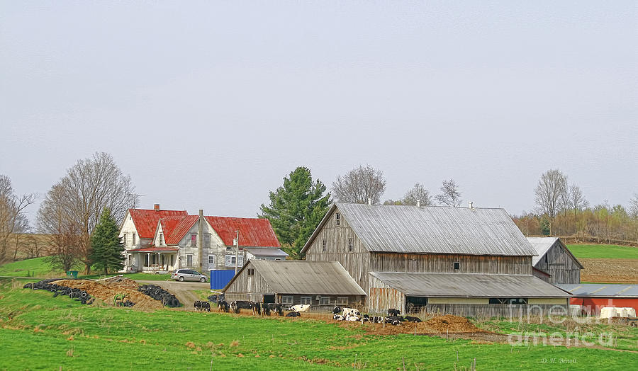 Farm Photograph - Rural Vermont Farm Scene by Deborah Benoit