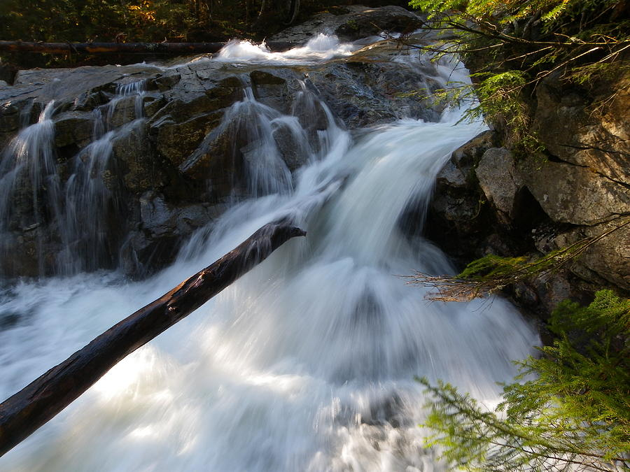 Waterfall Photograph - Rushing Falls by Sarah Lamoureux