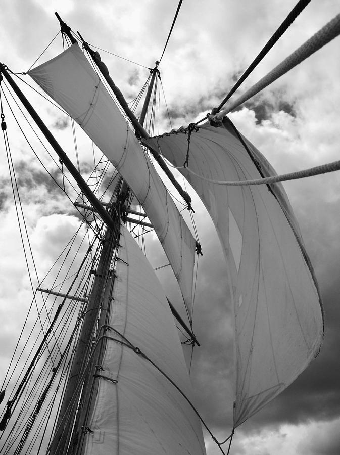 Sailing Photograph - Russell Tucker Thompson Nz by David Barringhaus