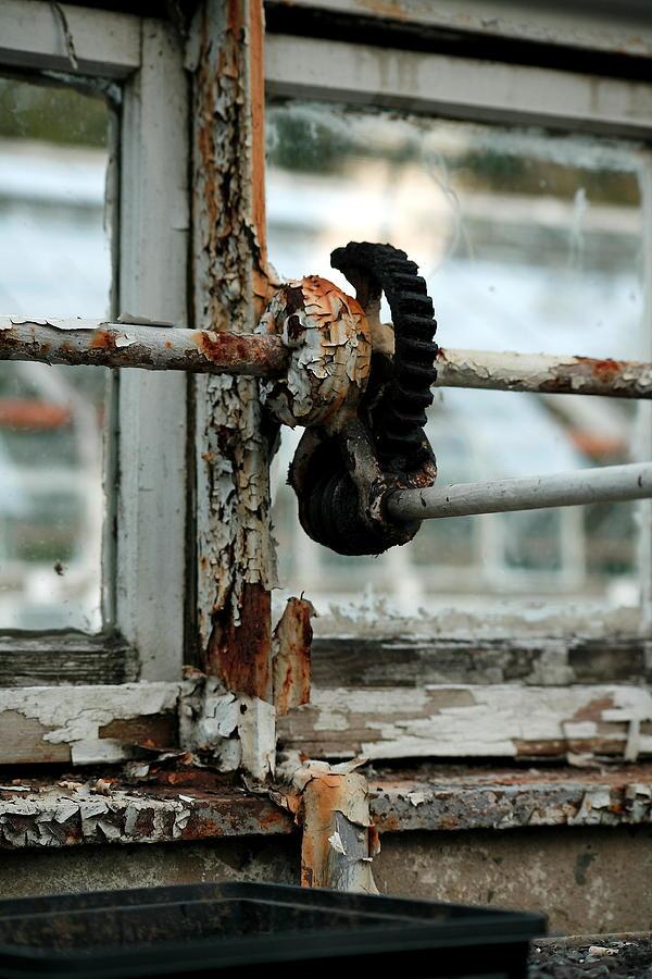 Rust Photograph - Rust by Maglioli Studios