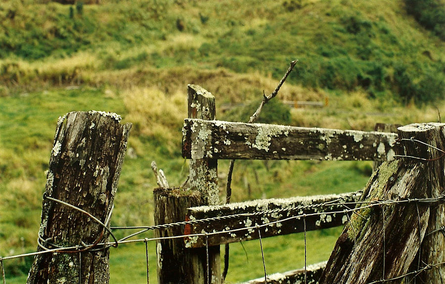 Fence Photograph - Rustic Fence by Marilyn Wilson