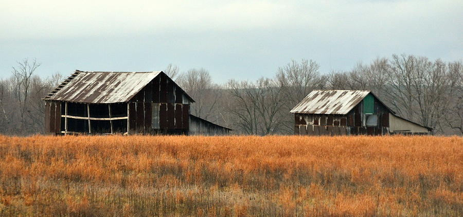 Rural Photograph - Rustic Illinois by Marty Koch