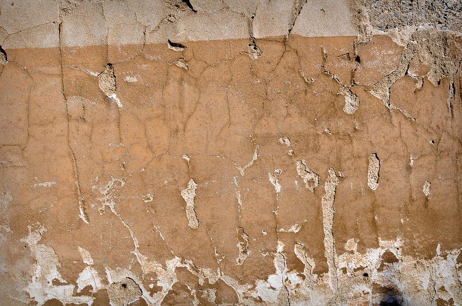 Rustic Wall Photograph By Brandon Bourdages