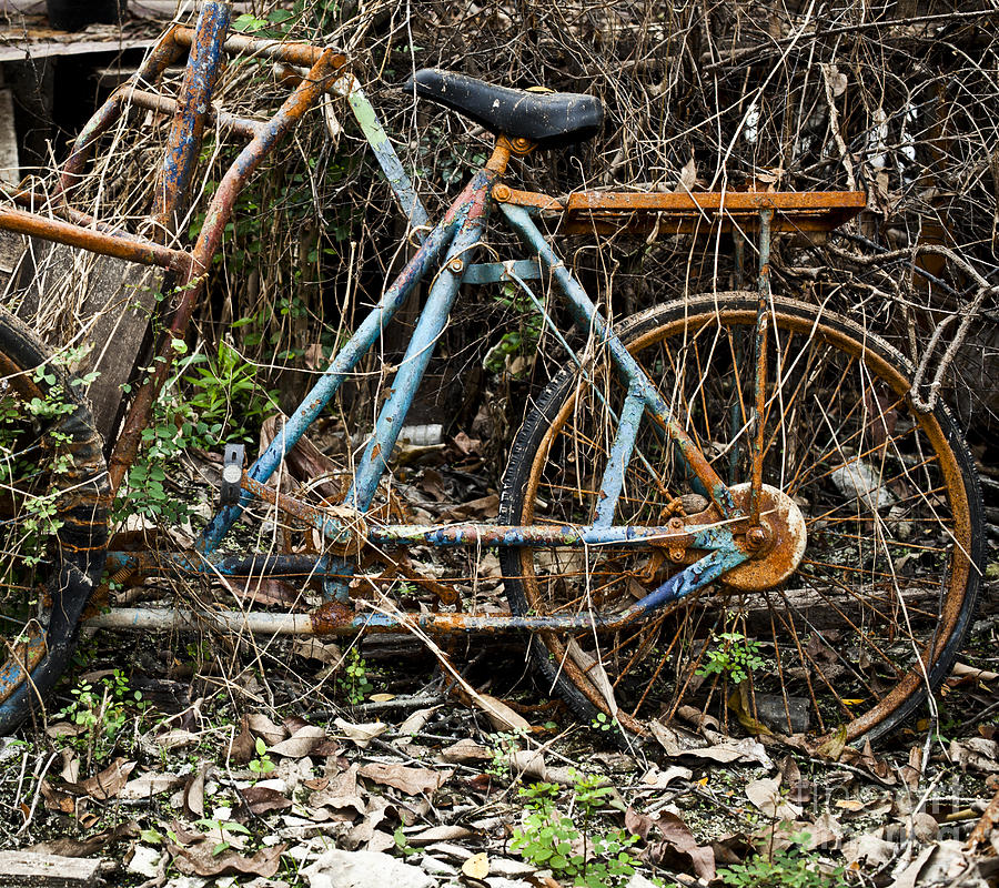 Aged Photograph - Rusty Wheel Of Bicycle by Chavalit Kamolthamanon