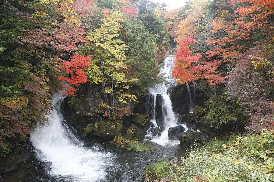 Ryuzu Fall Nikko Japan Photograph By Masami Iida