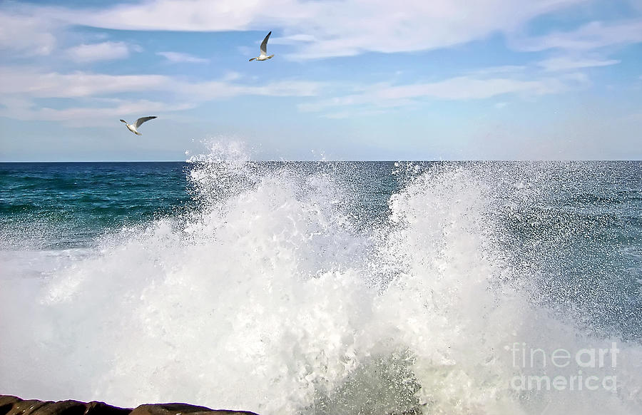 Splash Photograph - S P L A S H by Kaye Menner