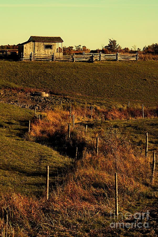 Landscape Photograph - S Path by Aimelle