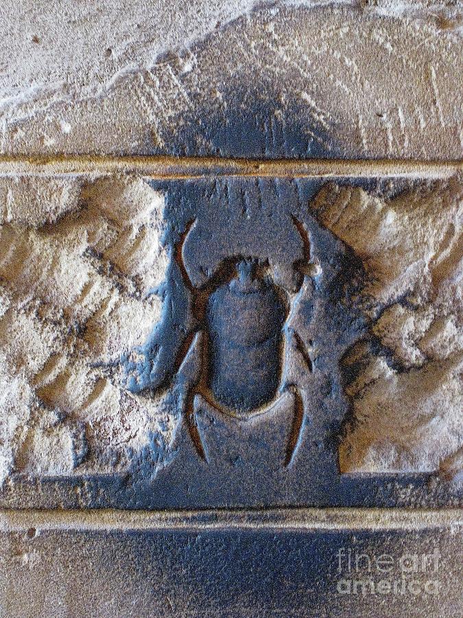 Scarab Beetle Pyrography - Sacred Scarab. by JSM Fine Arts John Malone